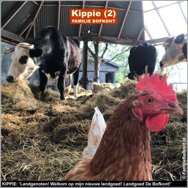 KIPPIE: 'Landgenoten! Welkom op mijn nieuwe landgoed! Landgoed De Bofkont!'