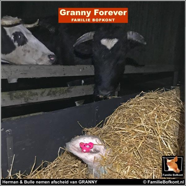 Herman & Bulle nemen afscheid van GRANNY