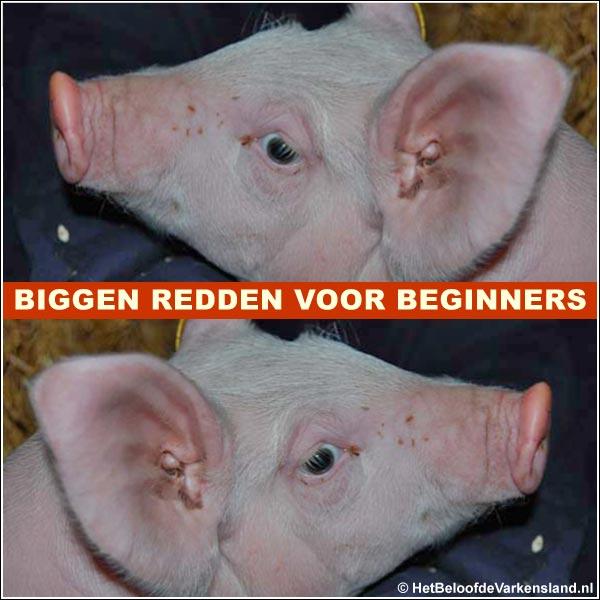 minivarkens.nl