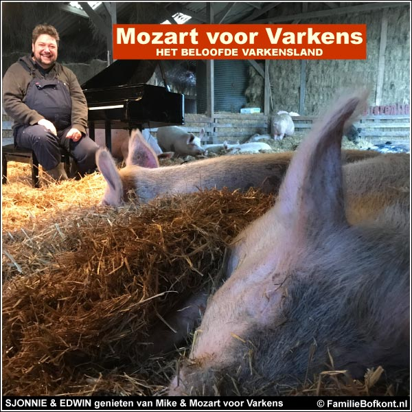 SJONNIE & EDWIN genieten van Mike & Mozart voor Varkens